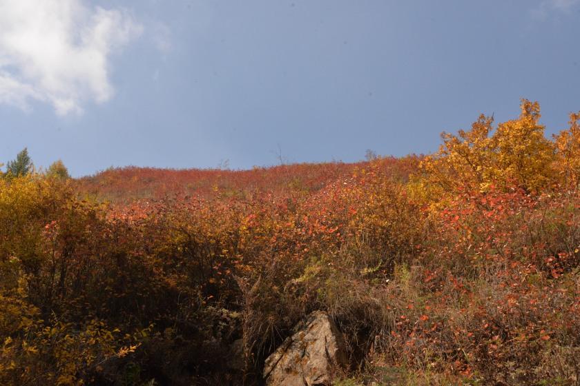 苏木山2 (4).JPG