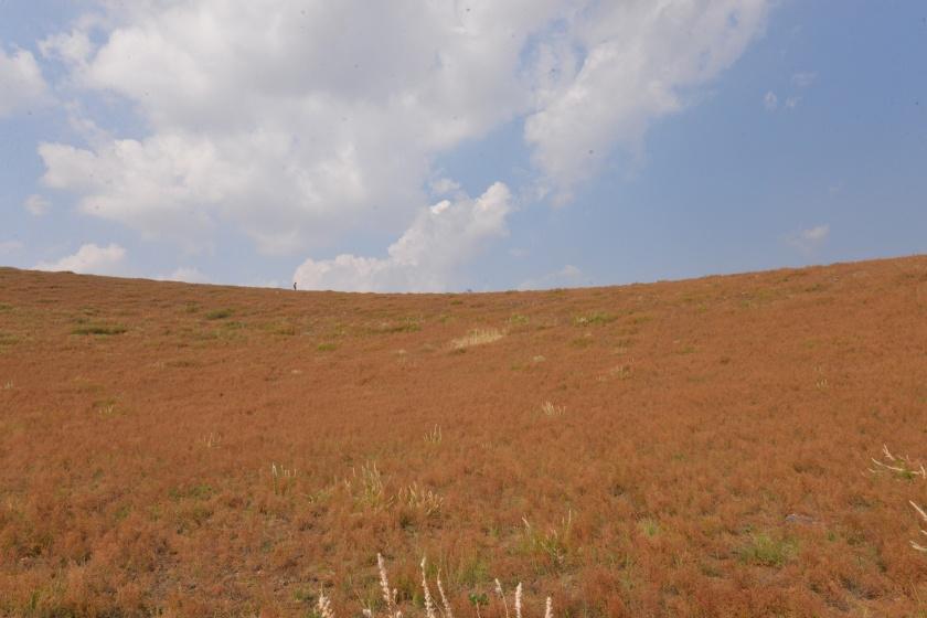 乌兰哈达火山群 (71).JPG